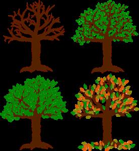 """Was ist das Gleichbleibende, wenn wir immer """"der Baum"""" sagen?"""